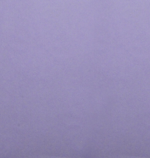 和紙 菊すき込み 紫 裏