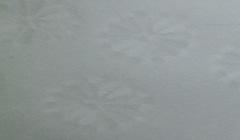 和紙菊すき込み 白